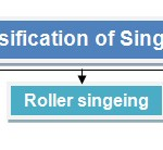 classification of singeing