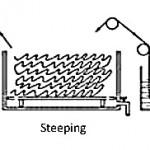 Rot steeping acid steeping enzyme steeping
