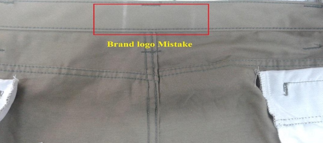 Brand Logo Mistake
