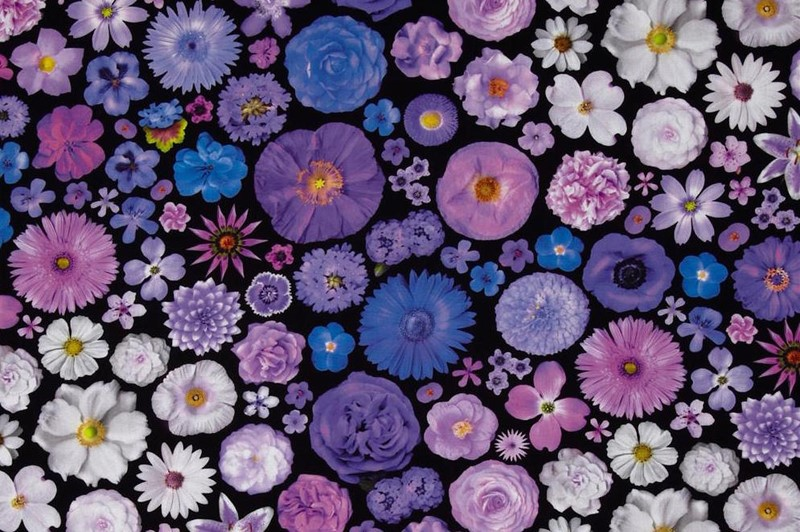 Digital Printing on Fabric: Pros and Cons
